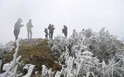 Đợt rét hại mạnh nhất từ đầu đông kéo dài bao lâu?