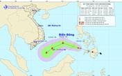 Các tỉnh từ Đà Nẵng đến Cà Mau và Kiên Giang chủ động ứng phó với áp thấp nhiệt đới