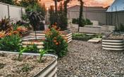 Chỉ một khoảnh đất nhỏ sau nhà nhưng cặp đôi yêu nhau 16 năm đã tạo nên khu vườn diệu kỳ với đủ loại cây lá nhờ bí quyết bất ngờ