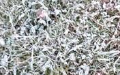 Miền Bắc rét run, băng tuyết xuất hiện ở miền núi Nghệ An