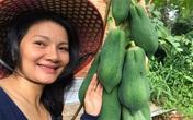 Kiều Trinh thu hoạch mỏi tay sau một năm làm vườn ở Bình Phước