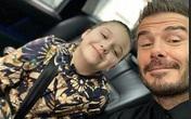 Con gái 8 tuổi của David Beckham lại gây sốt trong show diễn thời trang của mẹ