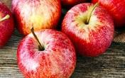 10 thực phẩm giúp phổi khỏe mạnh