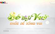 Chương trình Sống vui VTV2