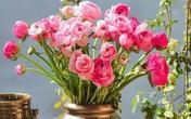 Trong khi giá hoa đang rớt thê thảm thì đây là loài hoa duy nhất hút khách rần rần dịp 8/3