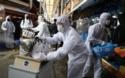 Hàn Quốc thêm gần 370 trường hợp nhiễm, 50 người tử vong vì COVID-19