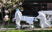 Hơn nửa triệu người nhiễm, Mỹ tiếp tục có số ca tử vong cao nhất trong 4 ngày liên tiếp