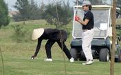 Hà Tĩnh: Doanh nghiệp mở cửa sân golf đón khách giữa dịch bị phạt 15 triệu đồng