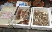 """""""Mách lẻo"""" đoạn phố bán các loại hải sản Quảng Ninh vẫn còn nhảy """"tanh tách"""" trong bể"""