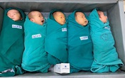 """5 công dân tí hon chào đời trong """"ổ dịch"""" giữa trung tâm Thủ đô"""
