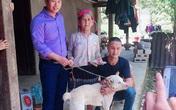 Cụ bà H'Mông khóc thương khi phải bán chó, thanh niên vượt 140km tặng lại bà