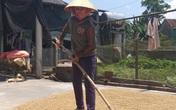 Bác bỏ thông tin người dân Hà Tĩnh bị ép buộc không nhận tiền hỗ trợ COVID-19