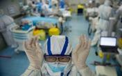 Hàn Quốc không cách ly bệnh nhân dương tính lần 2, Mỹ điều trị COVID-19 bằng thuốc chống sốt rét bất chấp cảnh báo