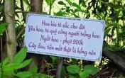 Những bảng cảnh báo cực kỳ nhẹ nhàng, dễ thương nhưng lại khiến du khách tuân thủ răm rắp