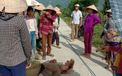 Nghệ An: Người phụ nữ bất tỉnh do dây điện rơi trúng đầu