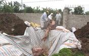 Hải Dương: Trưởng Ban thú y phường chiếm đoạt hơn 200 triệu tiền hỗ trợ dịch tả lợn châu Phi như thế nào?