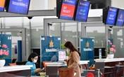 Một tháng trước Tết, giá vé máy bay quay đầu giảm