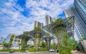 TNR Holdings Vietnam – khẳng định vị thế, lan tỏa thành công