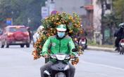 Người Hà Nội hối hả mua đào Tết sớm trước diễn biến phức tạp của ổ dịch ở Hải Dương, Quảng Ninh