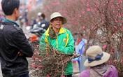 Hà Nội: Hối hả đi mua đào Tết nhưng nhiều người quên đeo khẩu trang