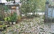 Miền Bắc sắp đón mưa dông lớn
