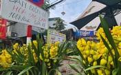 Hà Nội: Vắng khách, tiểu thương buôn hoa sau Tết đồng loạt giảm giá kịch sàn