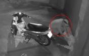Nằm ngủ trước cửa nhà, nam thanh niên bị trộm xe máy lẫn điện thoại