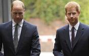"""Tình cảm anh em Hoàng tử William và Harry ra sao sau cuộc trò chuyện """"bom tấn"""" của Meghan Markle"""