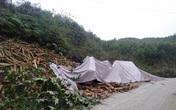 Thông tin mới nhất vụ tai nạn thảm khốc khiến 7 người tử vong tại dốc Bả Vai