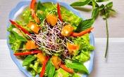 Salad rau mầm sốt mè rang tự làm