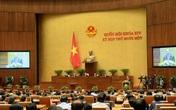 Trình Quốc hội phê chuẩn việc miễn nhiệm một số Ủy viên Hội đồng Quốc phòng và An ninh