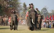 SGK viết sai về Hội đua voi ở Tây Nguyên: Nhà nghiên cứu văn hóa bức xúc