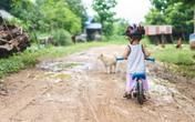 Sai lầm khi nuôi con nhiều mẹ Việt mắc phải