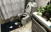 Ảnh: Những sự cố oái oăm trong nhà khiến chủ nhân 'phát điên'