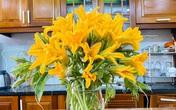 """Bỏ 7k mua loại hoa """"chơi chán thì đem xào'', vợ đảm bất ngờ khiến phòng khách rực rỡ đầy sức sống"""