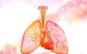 """Mũi là """"đèn tín hiệu"""" của phổi, ở mũi xuất hiện 3 dấu hiệu này cảnh báo bệnh phổi"""