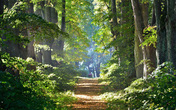 Thâm cung bí sử (234 - 1): Ma rừng Lào