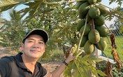 Diễn viên Minh Luân khoe cải tạo vườn rộng 2000m2, trồng toàn cây ăn trái