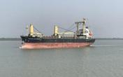 TPHCM: Phát hiện 9 ca dương tính từ tàu hàng hải của Ấn Độ