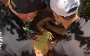 Hà Nội: Bé trai 10 tuổi rơi từ tầng 5 chung cư không có lưới an toàn