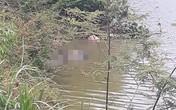 Kinh hãi phát hiện thi thể đeo đèn pin nổi trên mặt nước