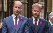 Tranh cãi thái độ im lặng của Hoàng tử William trước việc Harry về nước dự lễ tưởng niệm Công nương Diana