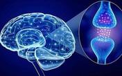 Sản phẩm thảo dược giúp cải thiện rối loạn thần kinh thực vật: Hướng đi mới được nhiều người lựa chọn