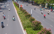 Khung cảnh tuyến đường Trần Duy Hưng - Nguyễn Chí Thanh giờ ra sao sau 1 tháng di dời hàng cây phong lá đỏ