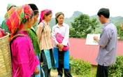 Chuyển biến tích cực trong giảm thiểu tình trạng tảo hôn và hôn nhân cận huyết ở Hà Giang