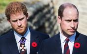 Lời nói lỡ miệng trong quá khứ của Hoàng tử William với em trai Harry: Câu chuyện có liên quan đến Meghan Markle