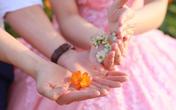 Thâm cung bí sử (239 - 4): Hạnh phúc là gì?