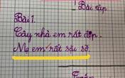 Học sinh đặt câu về mẹ, chỉ thêm vào 2 từ mà ai đọc đều lo cậu bé
