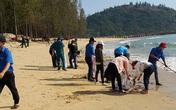 Tổ chức ăn nhậu bên bờ biển bất chấp lệnh cấm, 11 thanh niên bị phạt 165 triệu đồng
