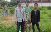 Bắt 3 tên trộm thập thò trong lùm cây